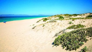 Saiba qual a lotação máxima das praias do Norte, Centro e Alentejo