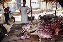 Mercado na rua na Nigéria