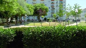Parque, em Alvalade, onde ocorreu o crime
