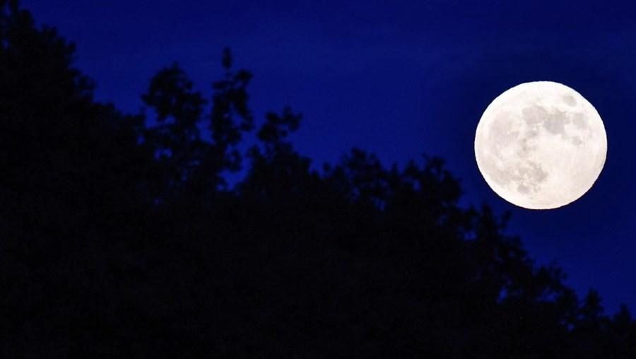 Lua eclipsada