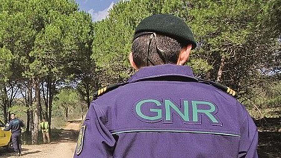 Detenção foi feita pelo Comando Territorial de Portalegre da GNR