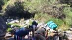 Jovem de 25 anos resgatado após queda no Gerês. Veja as imagens