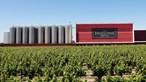 Casa Ermelinda Freitas: 100 anos de vinhas e vinho