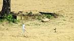 Mulher faz três quilómetros a pé para atirar filho autista ao poço