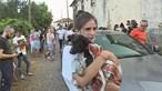 Mais de 30 animais resgatados em Valongo estão à guarda de associações