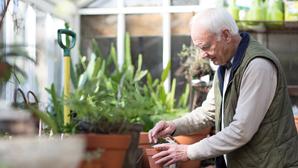 Todos por uma política de longevidade