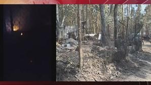Animais morrem carbonizados em canil consumido pelas chamas em Santo Tirso