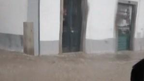 Chuva e trovoada provocam inundações e quedas de árvores em Évora