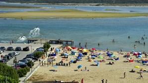 Banhos interditados na Foz do Arelho após darem à costa organismos gelatinosos