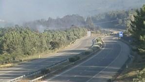Incêndio em Fátima já foi dominado. A1 reaberta ao trânsito