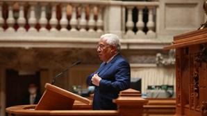 """""""Absolutamente intolerável"""": António Costa sobre """"massacre"""" em abrigo de animais em Santo Tirso"""