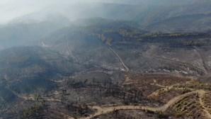 Imagens de drone da CMTV mostram devastação provocada pelo fogo em Oleiros