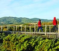 Passadiços da Cresmina (Guincho, Cascais)