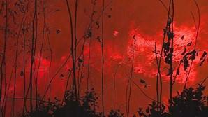 Incêndio que começou em Valongo já alastrou a Paços de Ferreira