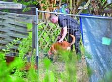 Alemães descobrem esconderijo secreto de suspeito de raptar Maddie