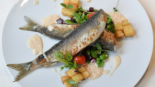 Baixo consumo de peixe durante gravidez pode afetar neurodesenvolvimento das crianças