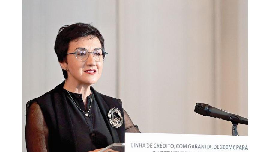 Maria do Céu Albuquerque, a ministra da Agricultura