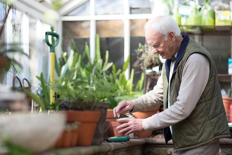 Aumento da longevidade impõe estratégias para manter a população sénior ativa na comunidade