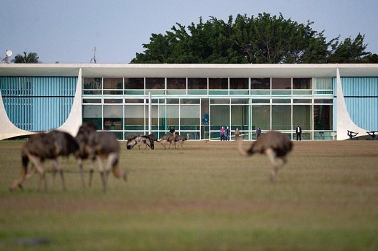 Jair Bolsonaro 'atacado' por ema no Palácio da Alvorada
