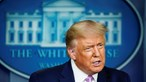 Donald Trump apoia eventual compra do TikTok pela Oracle