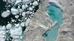 Desaparecimento da camada de gelo da Terra a caminho do 'pior cenário' climático
