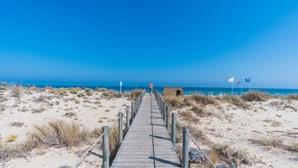 Alerta para tubarão faz içar bandeira vermelha em três praias de Tavira