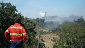 Avião da Força Aérea colabora hoje na prevenção de fogos