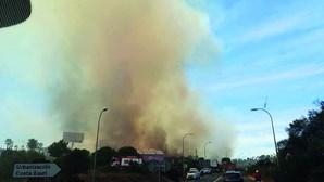 Bombeiros algarvios atacam incêndio espanhol em Ayamonte