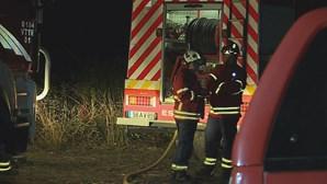 Incêndio de grandes dimensões combatido por mais de 200 bombeiros em Arouca