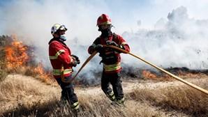 Mão humana na origem de 70% dos incêndios em Portugal