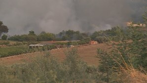 Reabertas estradas A4 e EN15 fechadas devido a incêndio em Mirandela