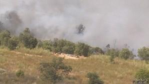 Detido homem suspeito de originar fogo de Mirandela com trabalhos agrícolas