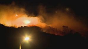 Incêndio lavra em zona de mato na Amadora