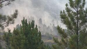 Nevoeiro levanta e permite que meios aéreos se juntem ao combate às chamas no Gerês