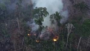 Imagens aéreas mostram fogos ativos na Amazónia