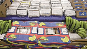 Dois agentes da PSP caçados com 18 milhões em cocaína em contentor de bananas