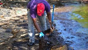 Maurícias: O esforço dos habitantes para conter o derrame de petróleo