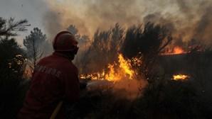 GNR detém mulher por atear incêndio em S. Pedro da Cova, Gondomar