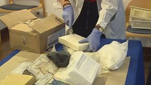 PJ apanha 400 quilos de cocaína em Sines. Dois portugueses entre os seis detidos