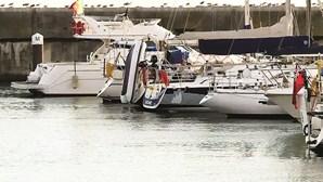 Orcas atacam bote preso a veleiro em Almada