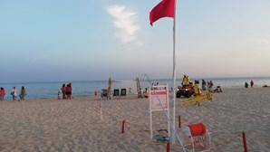 Mulher diz ter visto tubarão e obriga a hastear bandeira vermelha em praias de Monte Gordo