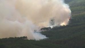 Autarcas suspeitam de incendiários à solta