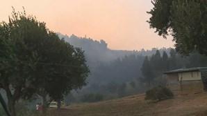 Incêndio em Abrantes mobiliza mais de 200 bombeiros e 9 meios aéreos