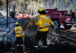 Bombeiros combatem incêndio florestal