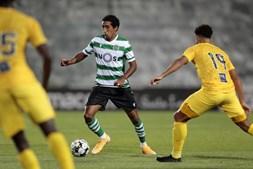 Portimonense - Sporting
