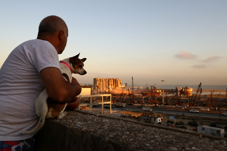 Michel Assad e Pepsi olham para a destruição no porto de Beirute através do telhado de casa