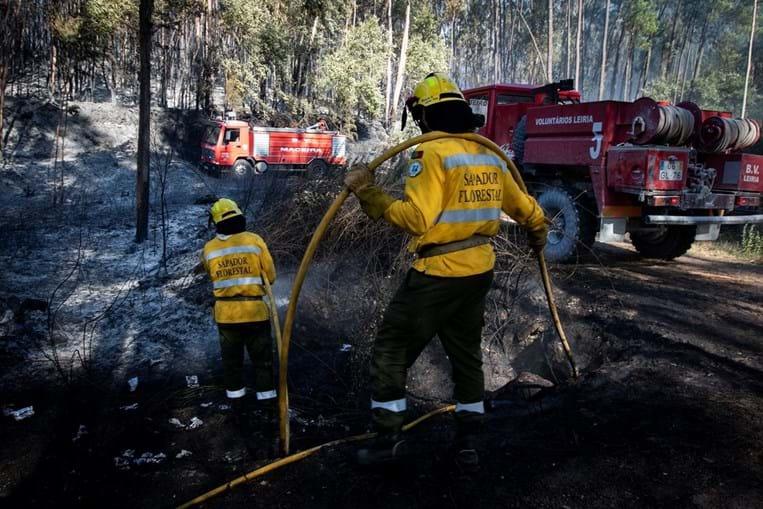 Sapadores florestais e bombeiros combateram ontem um incêndio em Sirois, no limite do concelho de Leiria e Ourém