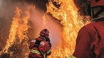 47 concelhos do interior Norte, Centro e Algarve em risco máximo de incêndio