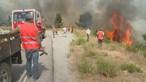 Proteção Civil espera dominar fogo de Proença-a-Nova durante a madrugada