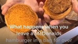 Hambúrguer da McDonald's guardado há 24 anos continua indestrutível